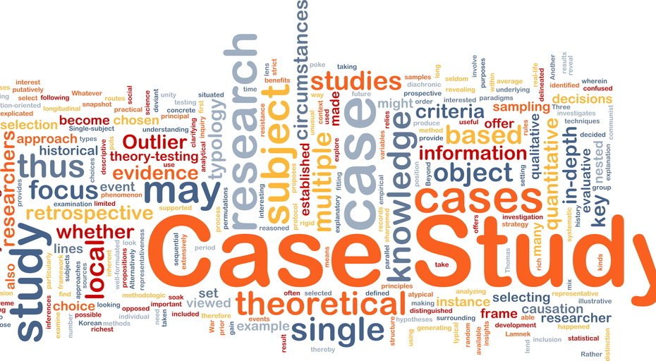 Wordcloud illustration of case study